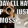 """the """"moss-cup"""" project – a tribute to the IT crowd"""